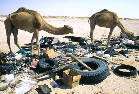 Solid-Wastes-Saudi-Arabia