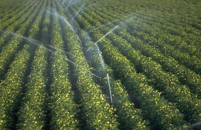 efficient irrigation methods
