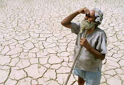 how to combat desertification