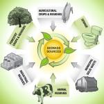 موارد الطاقة الحيوية في منطقة الشرق الأوسط وشمال أفريقيا