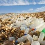 plastic-waste-dubai