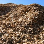 biomass-resources