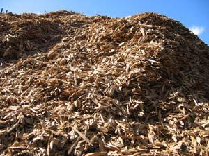 biomassresources