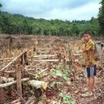 indigenous-communities-deforestation