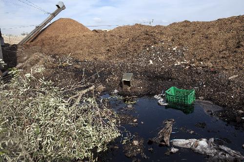An olive oil mill in Jordan