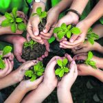 sustainable-development-arab
