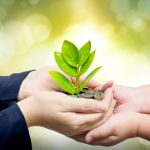 Top Sustainability Trends in Europe