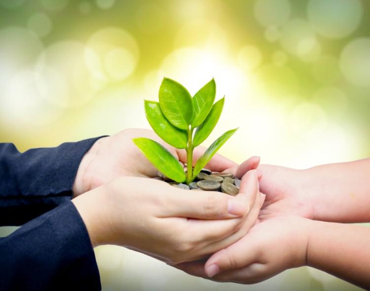 sustainability-mena
