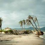 السياسات المناخية في تونس : ناجعة رغم ضعف الإمكانيات
