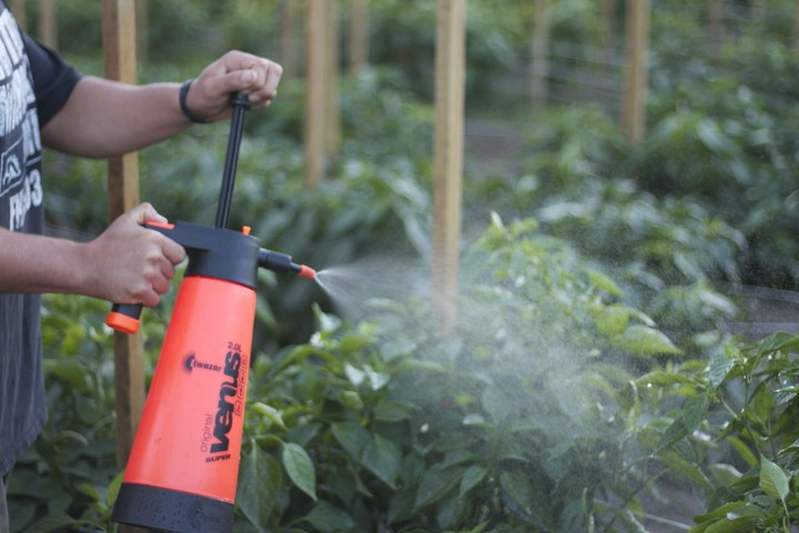 how to make organic liquid fertilizer