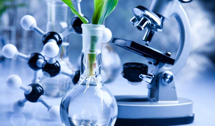 bio-based-polymers-packaging