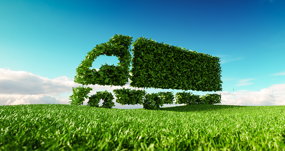 supply chain and sustainability